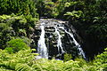 WaterfallHaurakiNZ20100110.JPG
