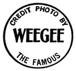 Weegee the famous.TIF