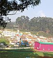 Wellington village.Ooty.jpg