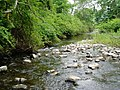 West Branch Papakating Creek near mouth in Wantage Township New Jersey.jpg