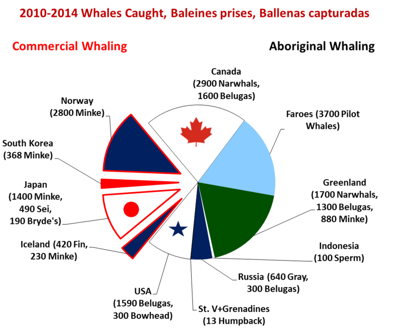Whales caught 2010-2014, by country Whales caught recently.png