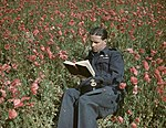 Wing Commander Guy Gibson VC, Commanding Officer of No. 617 Squadron (The Dambusters) at Scampton, 22 July 1943. TR1125.jpg