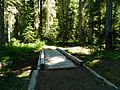 Wood Bridge at Mount Adams Wilderness 03.JPG