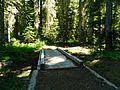 Wood Bridge at Mount Adams Wilderness 03.JPG
