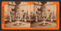 Woodward's Gardens, under the Dome of the Conservatory, from Robert N. Dennis collection of stereoscopic views.png