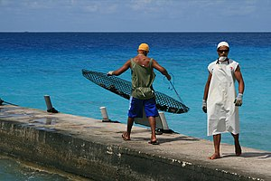 Two workers in a black-pearl farm, in Polynesia