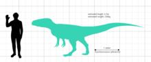 Xuanhanosaurus - Wikipedia