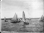 Yachting, Sydney Harbour, N.S.W. (4903872708).jpg