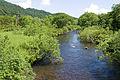 Yoppi River 01.jpg