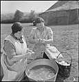 Youth Service Volunteers Help British Farmers- Agricultural Camp at Nunney Catch, Somerset, England, UK, 1943 D16336.jpg