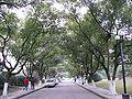 Yuquan campus 21.jpg
