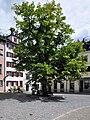 Zürich - St. Peter Hofstatt IMG 1177 ShiftN.jpg