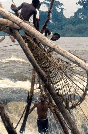 Kisangani - Wagenya fishermen