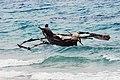 Zanzibar 2012 06 05 4241 (7592176126).jpg