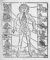 Zodiac man. Wellcome M0017629.jpg