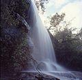 (1)Uloola Falls Royal NP.jpg
