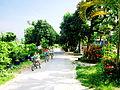 Đường ở xã Bình Hòa.jpg
