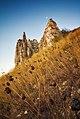 Білокузьминівські крейдяні скелі.jpg