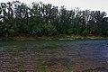 Вид на правый берег Сакмары - panoramio (1).jpg