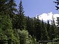 Вр.Тодорка от пътя за х.Вихрен - panoramio.jpg