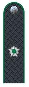 Гос.советник РФ 3 класса Россельхознадзор.png