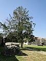 Дольмен на территории Пицундинского храма - panoramio.jpg