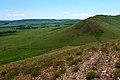 Заброшенная полевая дорога - panoramio.jpg