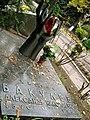 Могила Александра Николаевича Бакулева на Новодевичьем кладбище.jpg