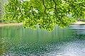 На синевирському озері.jpg