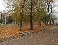 Новгород-Сіверський. Парк Шевченка.JPG
