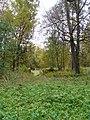 Осень в Дворцовом парке Гатчины. Амфитеатр - panoramio (1).jpg