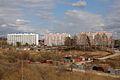 Подсолнухи. Май 2012 г. - panoramio.jpg