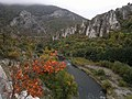 Река Искър при Черепиш.jpg