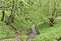Трускавецький парк 8.jpg