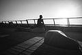 נמל תל אביב שחור לבן.jpg