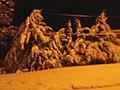 الشتاء القارس لمدينة عين الروى ديسمبر 2012 22.jpg