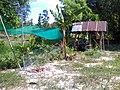 สวนสุนนท์กุล,บ้านสร้างโพน - panoramio (2).jpg