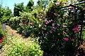 ロイズコンフェクト ローズガーデン(Royce' Confect Rose Garden) - panoramio (1).jpg