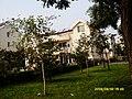 中型别墅 - panoramio.jpg
