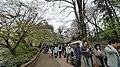 井の頭公園 - panoramio (20).jpg
