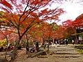 岩屋堂公園 (愛知県瀬戸市岩屋町) - panoramio (12).jpg