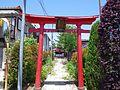 津島神社 稲城市東長沼(上新田) 2013.5.17 - panoramio (1).jpg