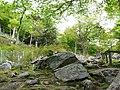 金華山登山道Kinka-san Tozandou - panoramio.jpg