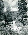 -IDAHO-B-0106- Payette River (6073252090).jpg