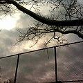 - panoramio - stephenLharlow.jpg