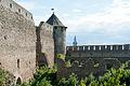 ....Крепость в Ивангороде ..jpg