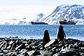 094-antartica-2017 67 (33606199595).jpg
