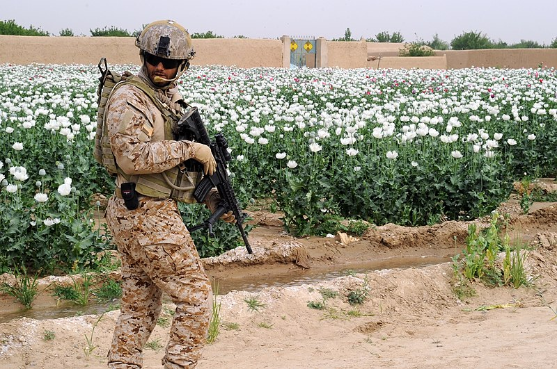 الجيش العربي الموحد 800px-110407-A-HM954-005_%285617028210%29