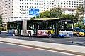 1223081 at Liuliqiaonan (20201017124505).jpg