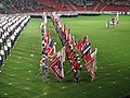 15. sokolský slet na stadionu Eden v roce 2012 (6).JPG